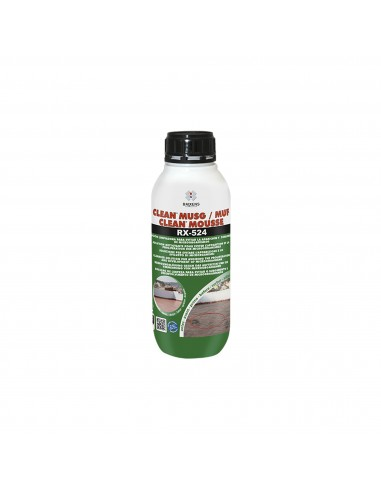 Limpiador Antimoho Baixens RX-524 Clean